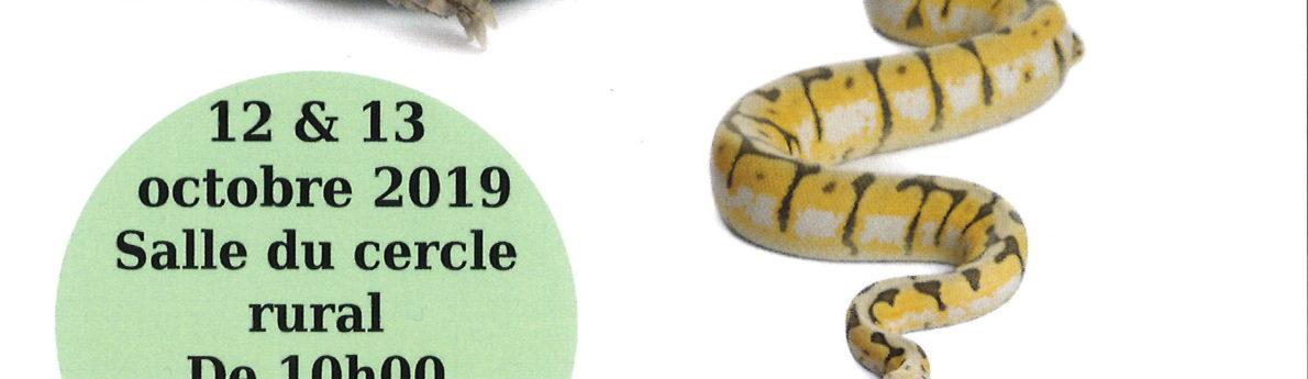 Exposition de reptiles